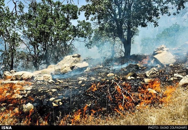 آتش سوزی ارتفاعات کوه خامی گچساران خاموش شد