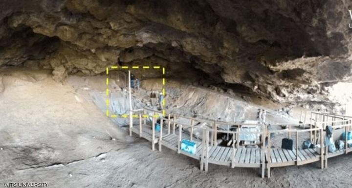کشف قدیمی ترین تخت خواب دنیا ساخته شده با گیاه در غارهای آفریقا