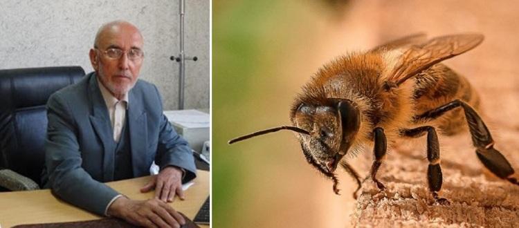 پروفسور بزرگ اکبرزاده خیاوی و ادعای درمان کرونا با زهر زنبور