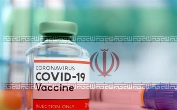 نظام باید پاسخ بدهد؛ چرا سلبریتی ها در اولویت دریافت واکسن نیستند؟!
