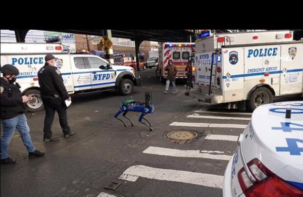 سگ رباتیک به گزارش پلیس رسیدگی می نماید