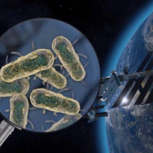 آیا میکروب ها از فضا به زمین می آیند؟
