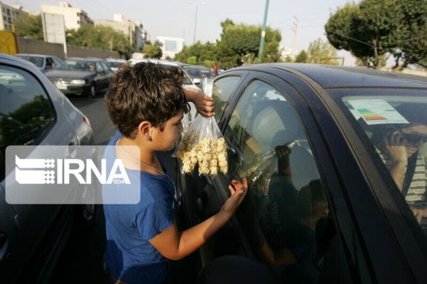 خبرنگاران 72 کودک کار در استان همدان زیر پوشش کمک های بهزیستی هستند