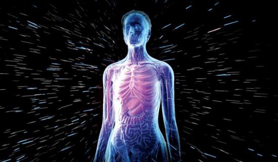 از تاریخچه بدن انسان چه می دانید؟!