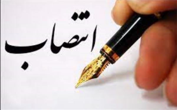معاون هماهنگی امور منطقه ها شهرداری تهران منصوب شد