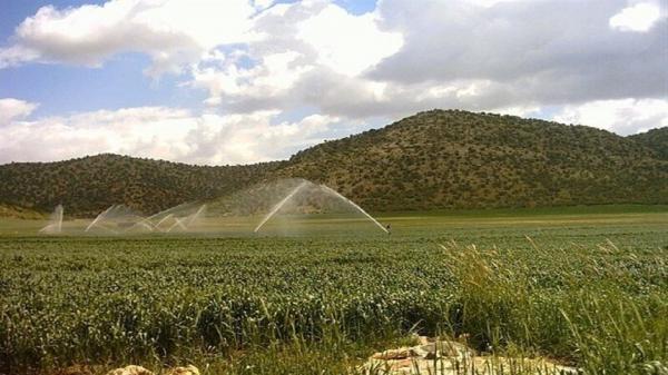 کاهش مصرف آب و بهبود عملکرد محصول با روش های نوین آبیاری