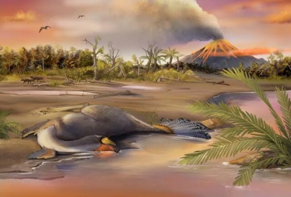 کشف اسرار دایناسورها با آنالیز غضروف های فسیل شده!